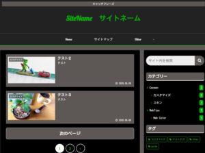 Cocoonオリジナルスキン:ビビッドカラー(黒×グリーン)